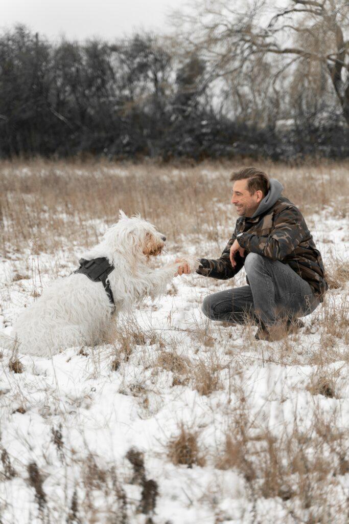 Ein Mann und sein Hund in einem schneebedeckten Feld mit herausstehenden Grashalmen des Vorjahres. Der Hund gibt dem Mann Pfötchen.
